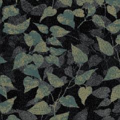 Foliage M 01 2019 1107
