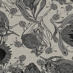 Protea M 08 2020 0708