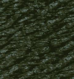 Ridge and Furrow 2021 1164